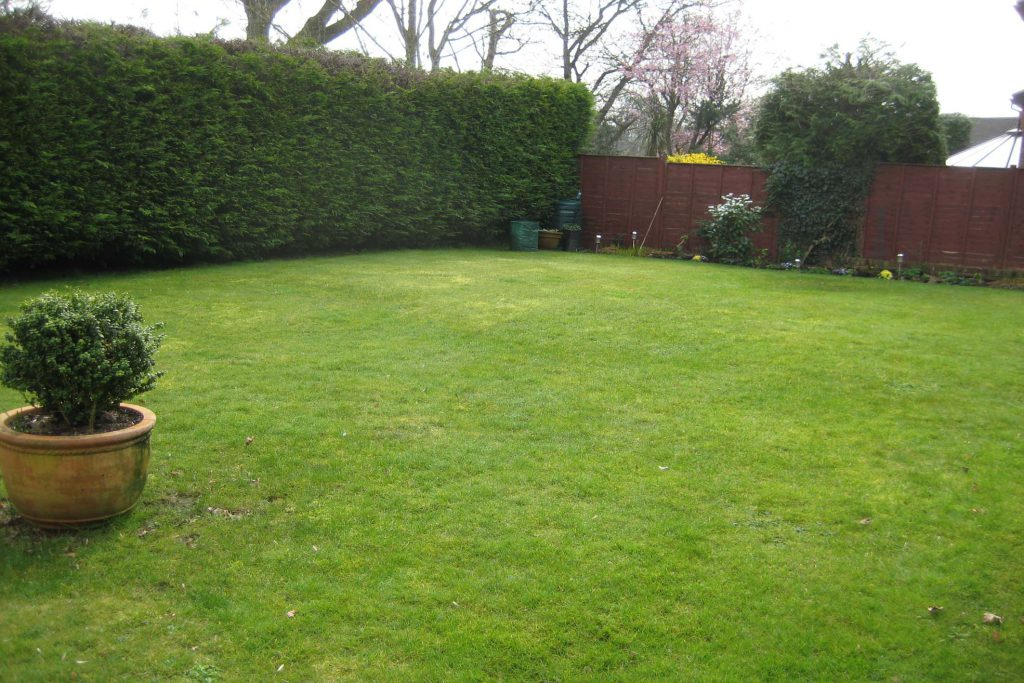 Fareham Garden Design. Before